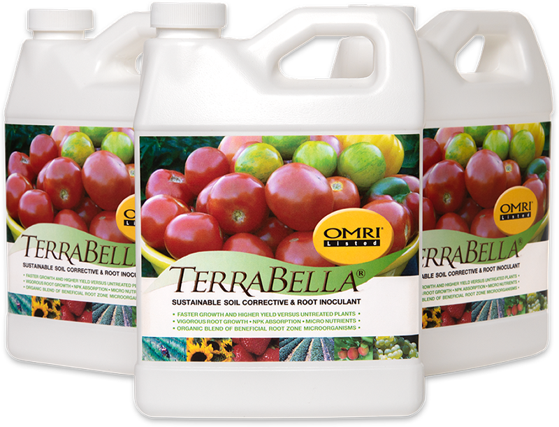 Bottles of TerraBella